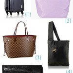 Trendy Travelista's Best Travel Bags